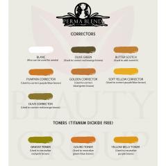 correctors pigment palete perma blend