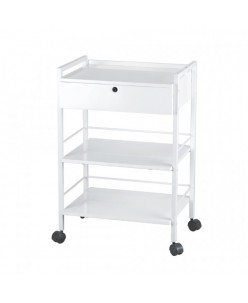 Cosmetology cart Easy